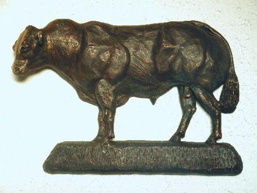 Belgisch Witblauwe stier