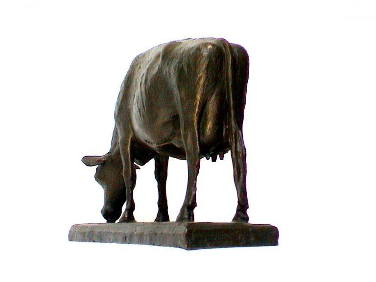 HF koe grazend